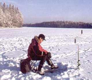 Какие требования мы предъявляем к зимнему удильнику?